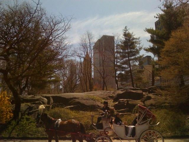Central Park: 1856-2009