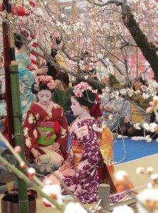 Giappone-mayu_hanami_2011